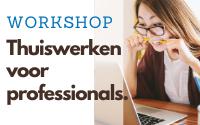 Workshop 'Thuiswerken voor professionals'