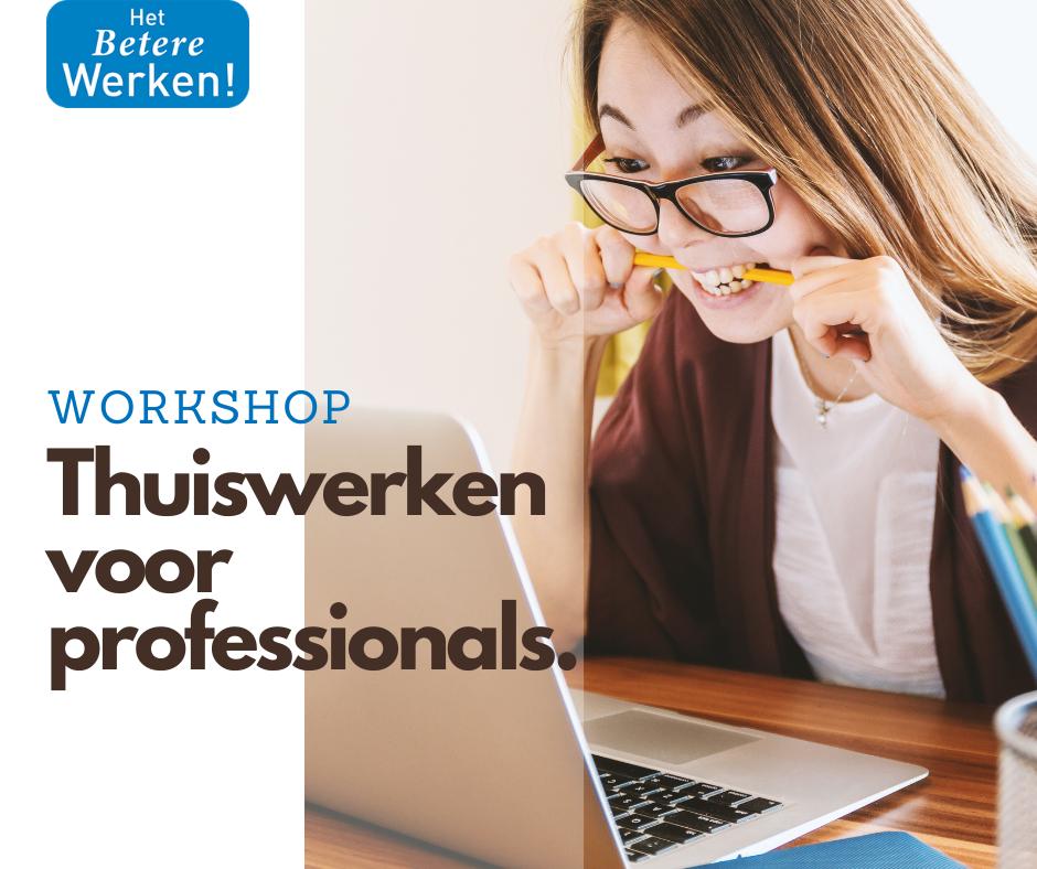 Workshop Thuiswerken voor profssionals